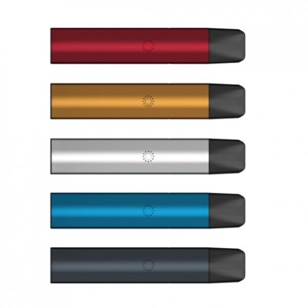 Luxury Slim Oval Shape 0.3ml Cbd Oil Ceramic Coil Disposable Vape Pen